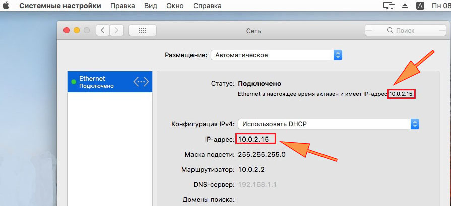 Скриншот, IP address на macOS