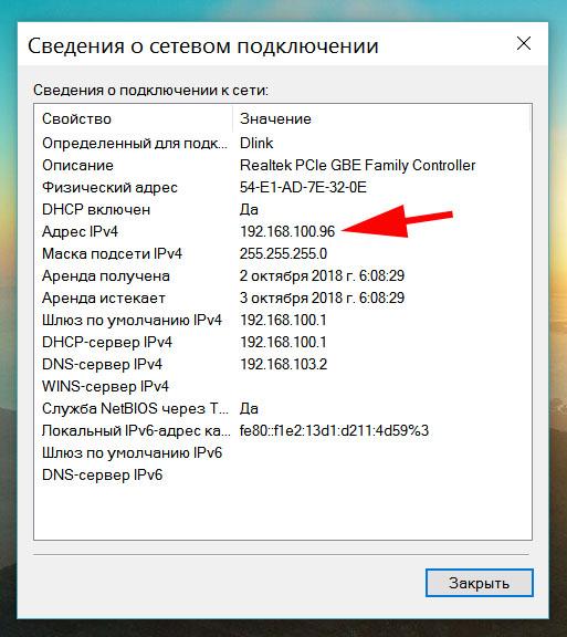 Скриншот, сведения о сетевом подключении